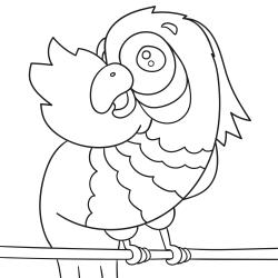 Omalovánky: Exotický papoušek