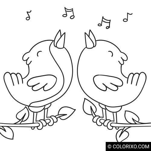 Omalovánky: Zpívající ptáci