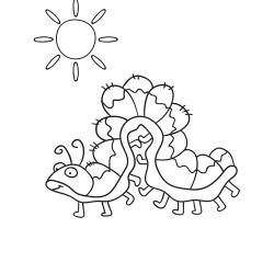 Livros de colorir: Centopeia engraçada
