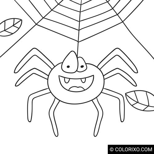 Omalovánky: Pavouk na pavučině