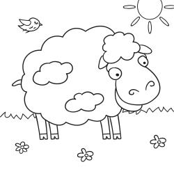 Livros de colorir: Ovelha