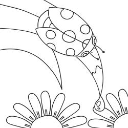 Розмальовки: Божа корівка на листі