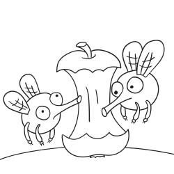 Kolorowanki: Dwie muchy