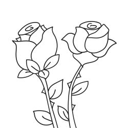 Kolorowanki: Dwie Róże