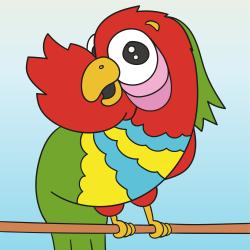 Egzotikus papagáj